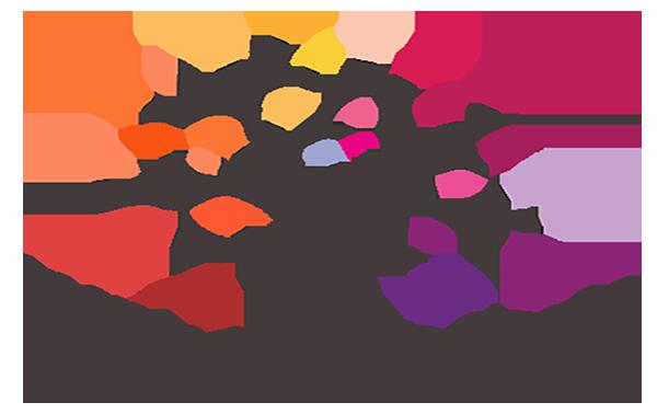 Dungannon Enterprise launches programme for female entrepreneurs