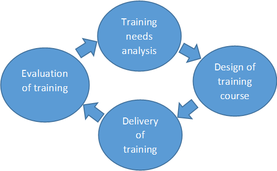 Training development cycle